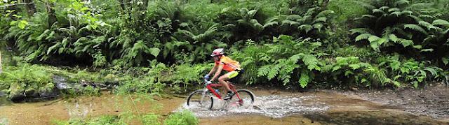 Stop Pinchazos en la Ruta del Agua 2012